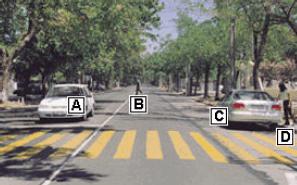 Examenes Licencias De Conducir