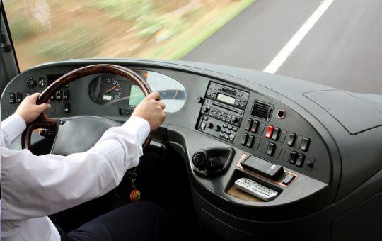 Buses y Vehículos de Transporte